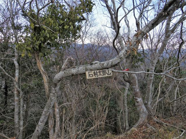 高宕山(石射太郎コース)登山口コースガイド 石射太郎山頂【登山口ナビ】