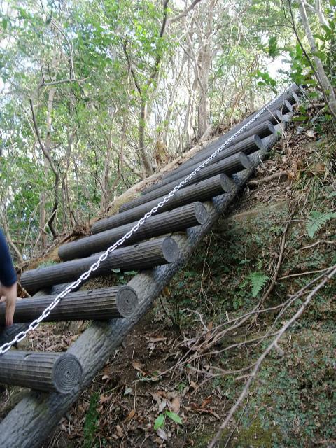 高宕山(石射太郎コース)登山口コースガイド 高宕山頂直下の階段【登山口ナビ】