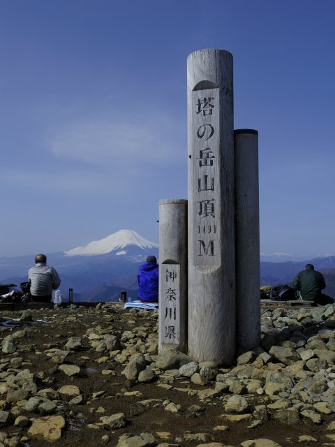 塔ノ岳(二俣~大倉尾根コース) 登山口コースガイド 塔ノ岳山頂【登山口ナビ】