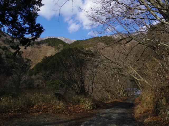 鍋割山(二俣~後沢乗越コース)コースガイド 西山林道 尾関廣の像からの眺め【登山口ナビ】
