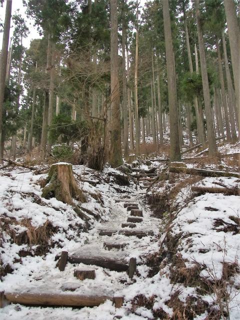鍋割山(二俣~後沢乗越コース)コースガイド【登山口ナビ】