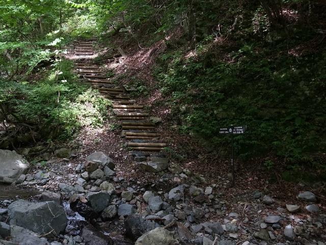 大室山(日陰沢橋~犬越路コース) 登山口コースガイド【登山口ナビ】