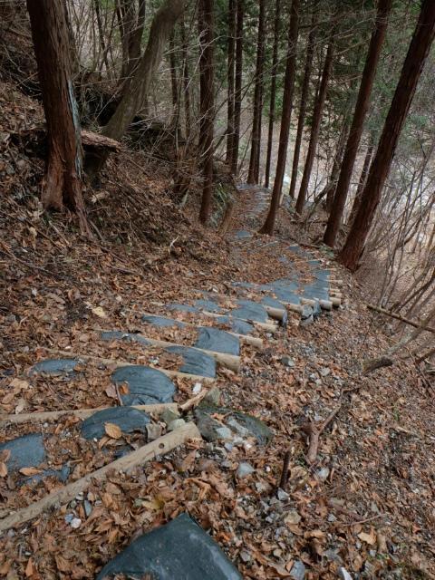 大室山(日陰沢橋~犬越路コース) 登山口コースガイド 階段【登山口ナビ】