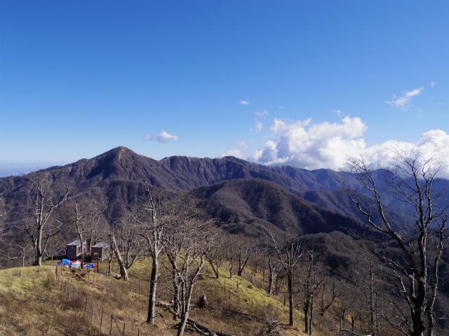 檜洞丸(板小屋沢~石棚山稜)登山口コースガイド 青ヶ岳山荘から蛭ヶ岳の眺望