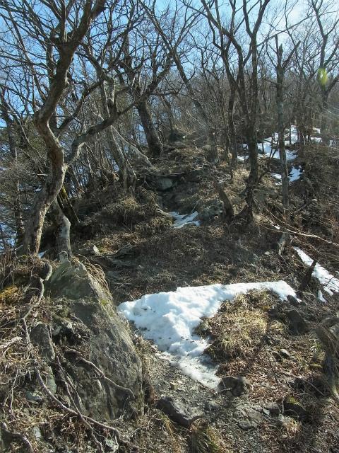 檜洞丸(日陰沢~犬越路コース) 登山口コースガイド 小笄の急登 【登山口ナビ】