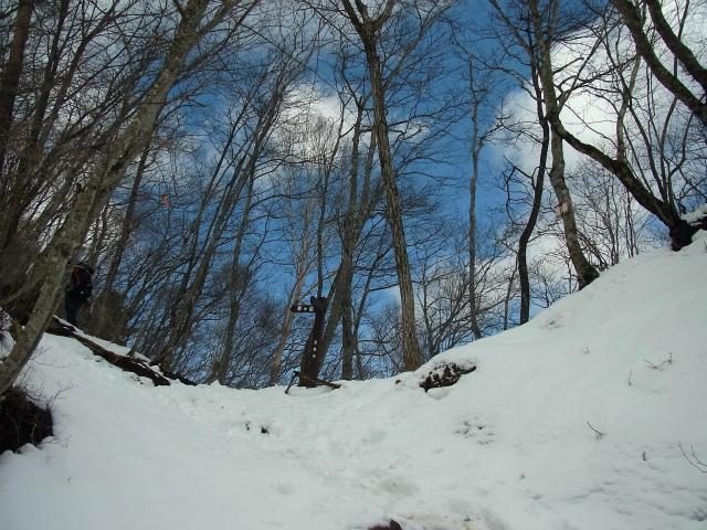 茅ヶ岳(深田記念公園~女岩コース) 登山口コースガイド 稜線【登山口ナビ】