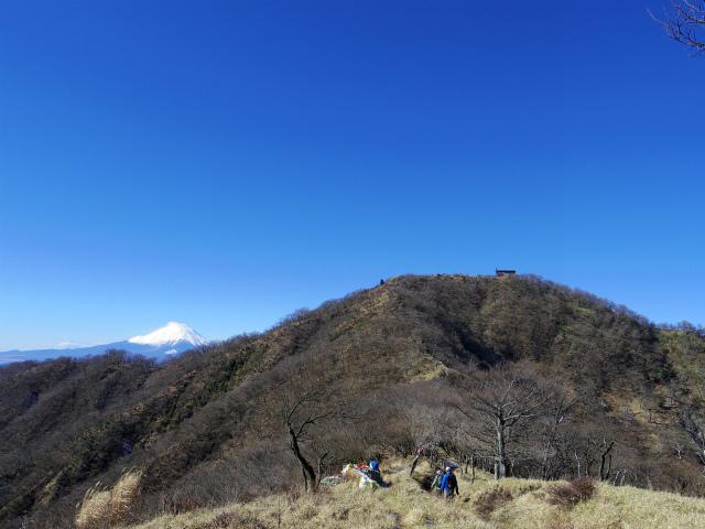 塔ノ岳(烏尾尾根) 登山口コースガイド【登山口ナビ】