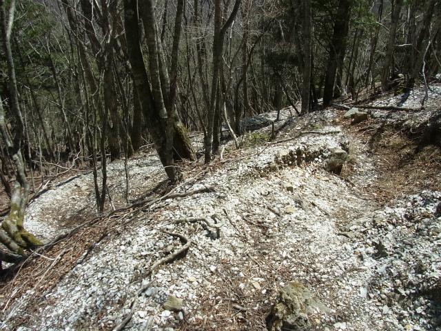 甲武信ヶ岳(近丸新道コース)登山口コースガイド 白い岩石【登山口ナビ】
