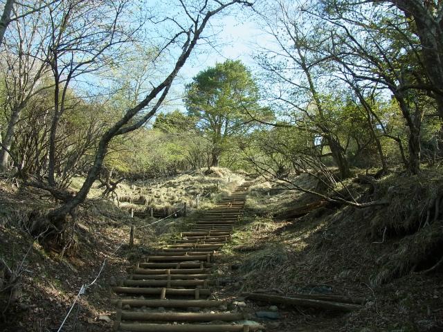 塔ノ岳(二俣~大倉尾根コース) 登山口コースガイド【登山口ナビ】