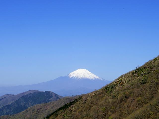 塔ノ岳(二俣~大倉尾根コース) 登山口コースガイド 小丸尾根の脇に富士山【登山口ナビ】