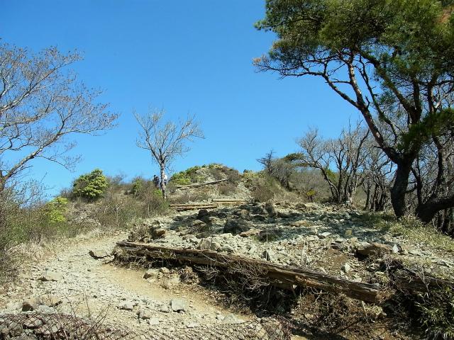 塔ノ岳(大倉尾根コース) 登山口コースガイド 花立ピークへの登り【登山口ナビ】