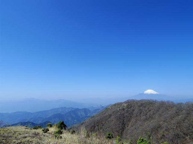 塔ノ岳(大倉尾根コース) 登山口コースガイド 花立ピークからの富士山【登山口ナビ】