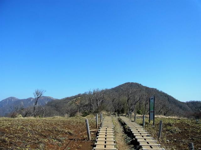 塔ノ岳(大倉尾根コース) 登山口コースガイド 花立ピークからの塔ノ岳【登山口ナビ】