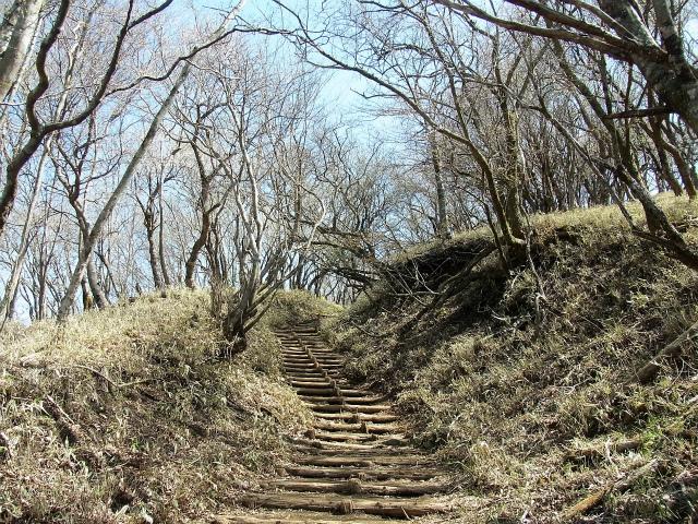 塔ノ岳(大倉尾根コース) 登山口コースガイド 金冷シからの階段の登り【登山口ナビ】