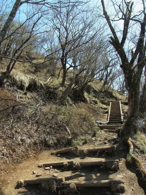 塔ノ岳(大倉尾根コース) 登山口コースガイド 山頂手前の階段【登山口ナビ】