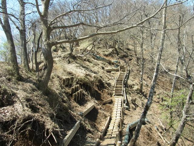 塔ノ岳(烏尾尾根) 登山口コースガイド 崩壊地の巻き道【登山口ナビ】