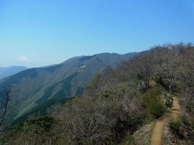 塔ノ岳(烏尾尾根) 登山口コースガイド 大倉尾根越の富士山【登山口ナビ】