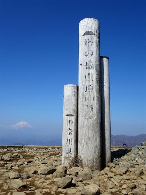 塔ノ岳(大倉尾根コース) 登山口コースガイド 塔ノ岳山頂標【登山口ナビ】