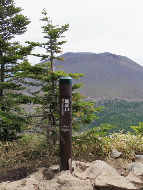 黒斑山(表コース・中コース) 登山口コースガイド 黒斑山山頂【登山口ナビ】