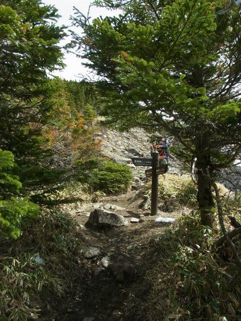 黒斑山(表コース・中コース) 登山口コースガイド 中コース分岐【登山口ナビ】