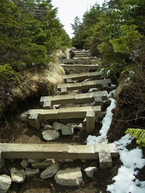 黒斑山(表コース・中コース) 登山口コースガイド 崩壊した階段【登山口ナビ】