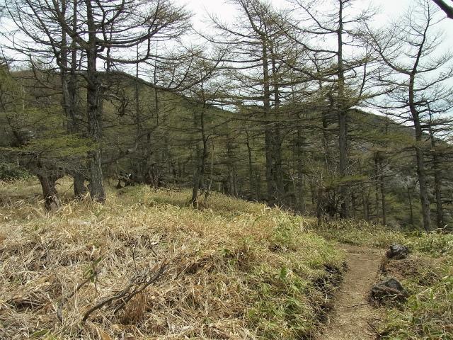 黒斑山(表コース・中コース) 登山口コースガイド 車坂山【登山口ナビ】