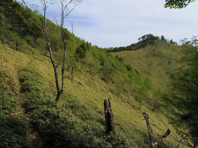 和名倉山(三ノ瀬~東仙波)登山口コースガイド 稜線【登山口ナビ】