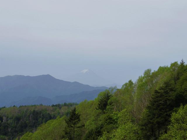 和名倉山(三ノ瀬~東仙波)登山口コースガイド 稜線出合からの富士山【登山口ナビ】