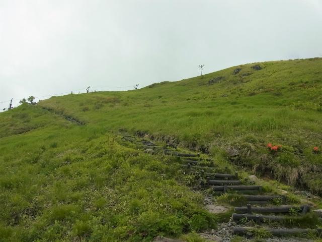 霧ケ峰・車山(八島ヶ原湿原~山彦尾根) 登山口コースガイド スカイパノラマリフト脇の階段【登山口ナビ】