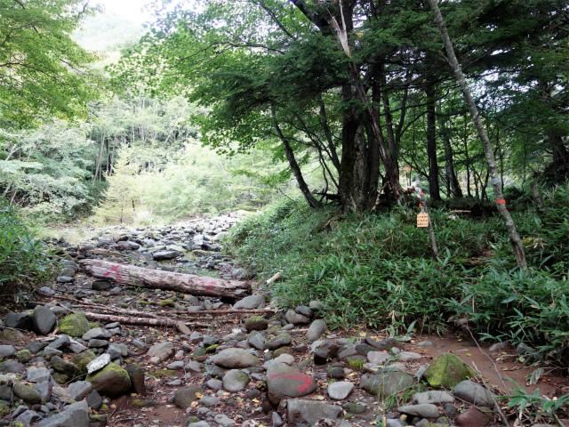 八ヶ岳・赤岳(天狗尾根) 登山口コースガイド 地獄谷入口【登山口ナビ】