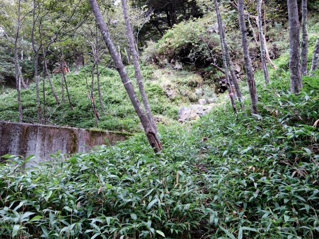 八ヶ岳・赤岳(天狗尾根) 登山口コースガイド 7番目の堰堤【登山口ナビ】