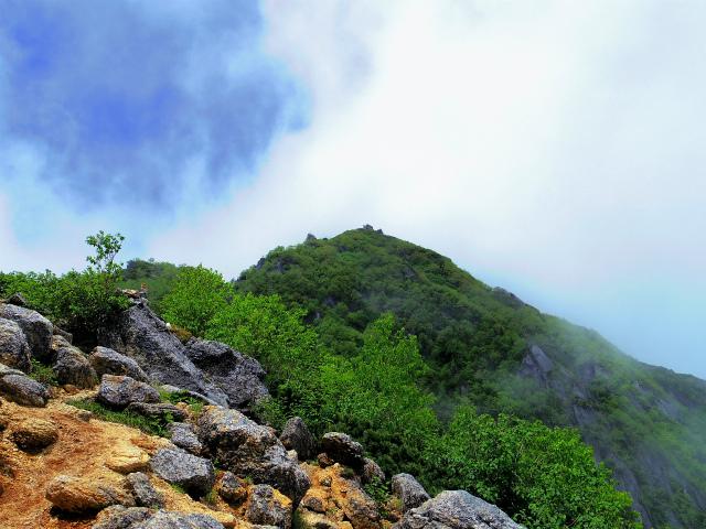 甲斐駒ヶ岳(黒戸尾根)登山口コースガイド ハイマツ帯【登山口ナビ】