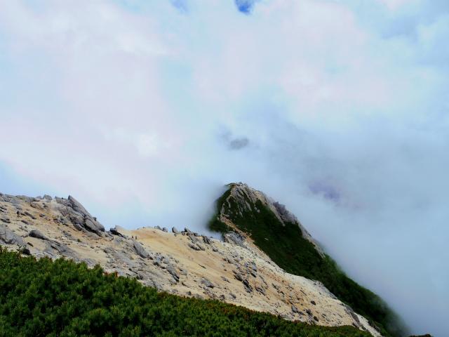 甲斐駒ヶ岳(黒戸尾根)登山口コースガイド 山頂からの摩利支天【登山口ナビ】
