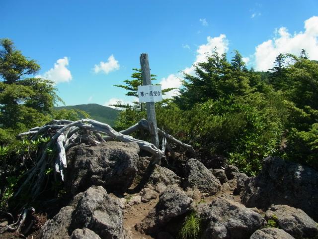 八ヶ岳・天狗岳(西尾根~黒百合平周回) 登山口コースガイド 西尾根第一展望台【登山口ナビ】