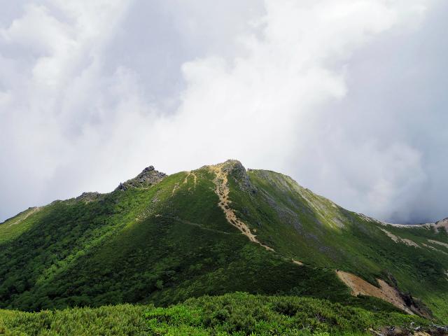 八ヶ岳・天狗岳(西尾根~黒百合平周回) 登山口コースガイド 西天狗山頂からの東天狗【登山口ナビ】