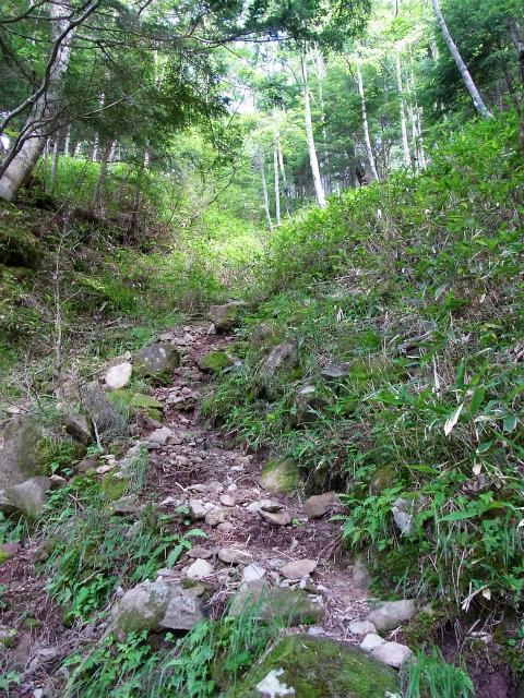 八ヶ岳・赤岳(天狗尾根) 登山口コースガイド 尾根取り付き急登【登山口ナビ】