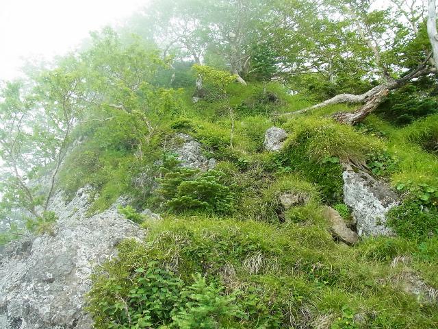 八ヶ岳・赤岳(天狗尾根) 登山口コースガイド P1峰【登山口ナビ】
