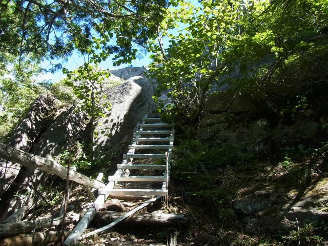 金峰山・五丈石(アコウ平~表参道)登山口コースガイド 梯子【登山口ナビ】