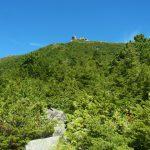 金峰山・五丈石(アコウ平~表参道)登山口コースガイド 岩稜のハイマツ帯【登山口ナビ】