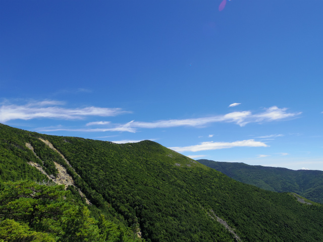 金峰山・五丈石(アコウ平~表参道)登山口コースガイド 山頂直下からの平岩尾根【登山口ナビ】