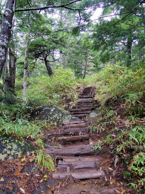 御嶽山・剣ヶ峰(黒沢口登山道) 登山口コースガイド 階段【登山口ナビ】