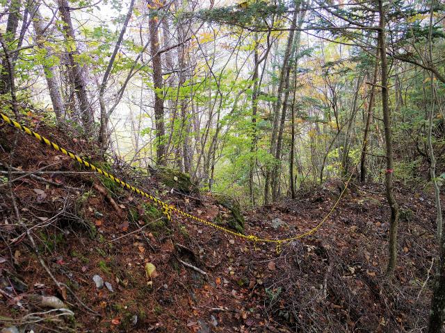 高谷山(夜叉神峠~桧尾峠周回)登山口コースガイド ロープ【登山口ナビ】