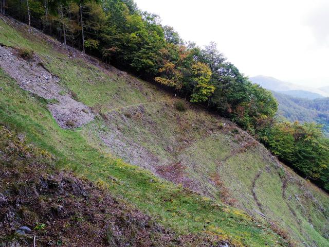 高谷山(夜叉神峠~桧尾峠周回)登山口コースガイド 大崩落地の横断【登山口ナビ】