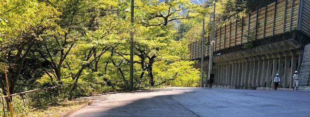 【奥多摩】都道204号日原鍾乳洞線(日原街道)終点の通行止解除【登山口ナビ】