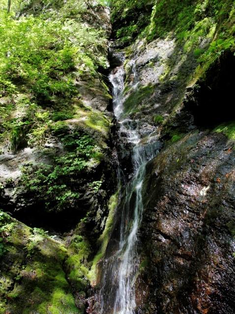 両神山(日向大谷・表参道ルート) 登山口コースガイド 白藤の滝【登山口ナビ】