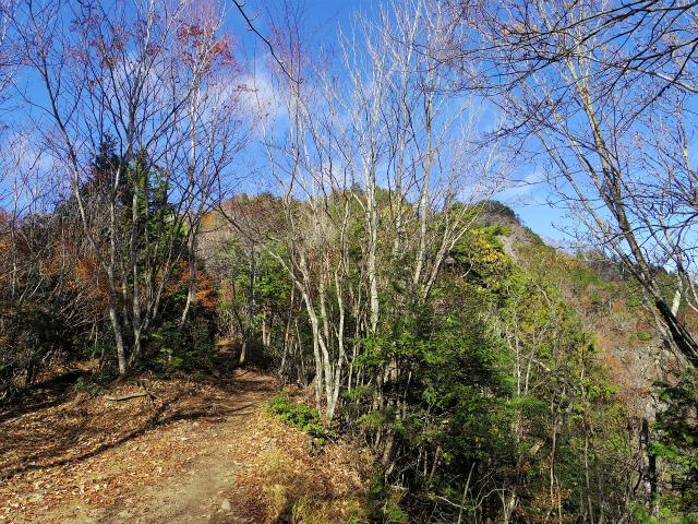 両神山(日向大谷・表参道ルート) 登山口コースガイド 富士見坂からの山頂【登山口ナビ】