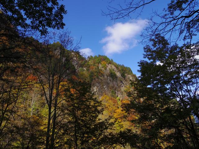 両神山(日向大谷・七滝沢ルート)登山口コースガイド 天武将尾根の岩壁【登山口ナビ】