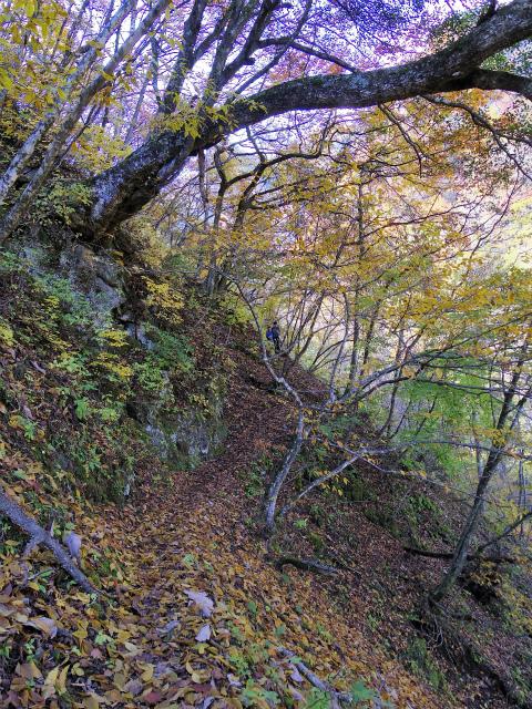 両神山(日向大谷・七滝沢ルート)登山口コースガイド【登山口ナビ】