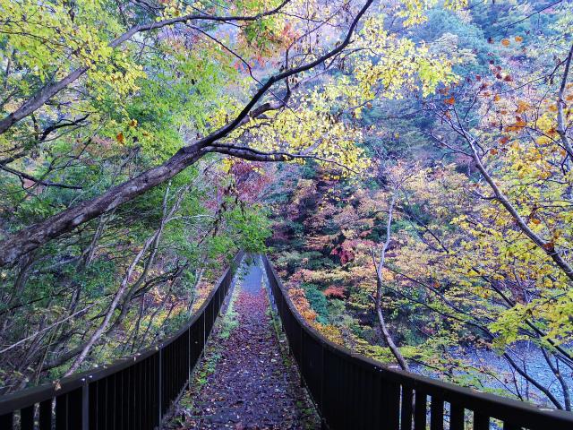 蛭ヶ岳(日陰沢橋~姫次)登山口コースガイド 神ノ川の橋【登山口ナビ】