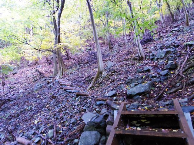 蛭ヶ岳(日陰沢橋~姫次)登山口コースガイド 階段【登山口ナビ】